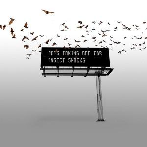 Bat Billboard